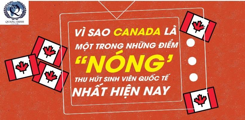 Vì sao Canada ngày càng thu hút sinh viên quốc tế?
