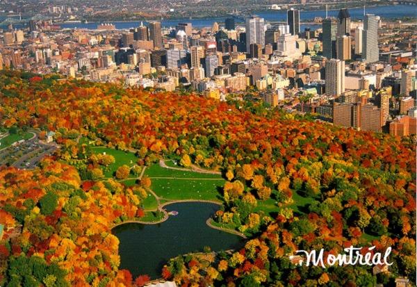 Sự quyến rũ của mùa thu Montréal