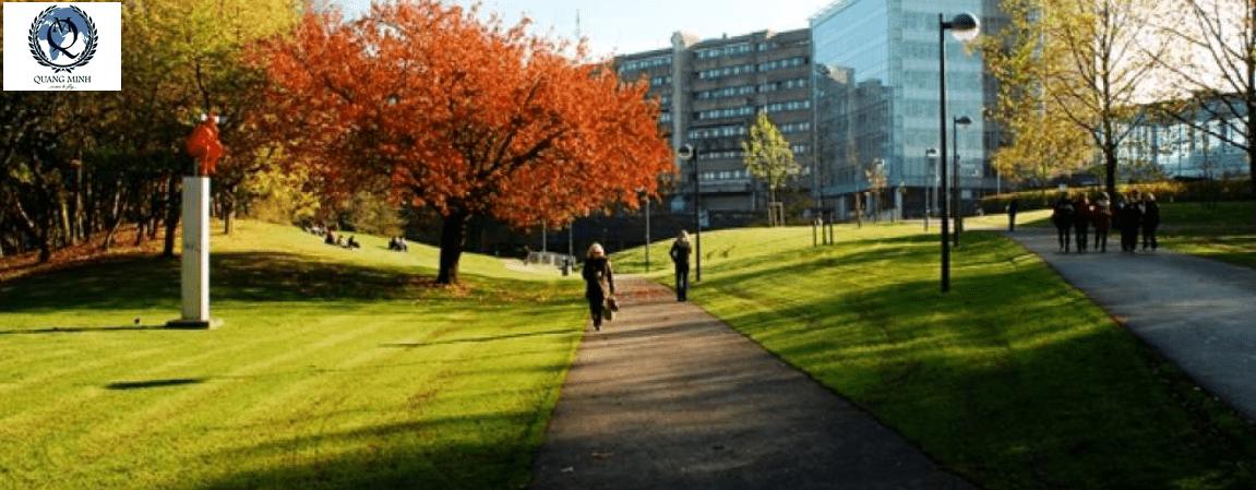 HỌC BỔNG KINH TẾ  TRƯỜNG ĐẠI HỌC  Vrije Universiteit Brussel (VUB ) – VƯƠNG QUỐC BỈ