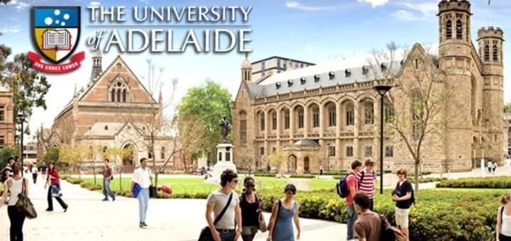 Săn học bổng tại trường Đại học Adelaide