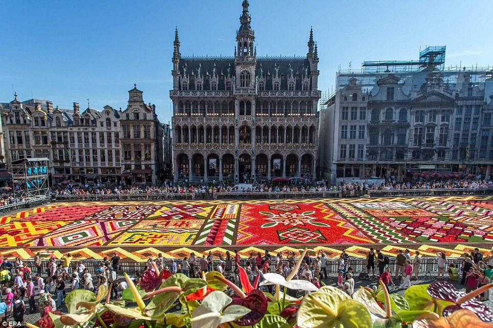 Kế hoạch du học Bỉ: Bạn cần chuẩn bị những gì?