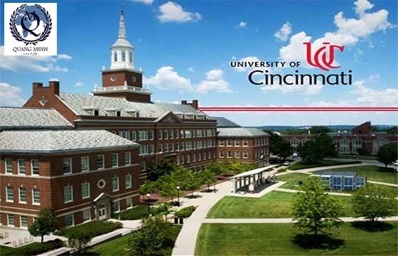 Đại học Cincinnati: Nhiều Học Bổng hấp dẫn thu hút sinh viên Quốc tế và sinh viên Việt Nam