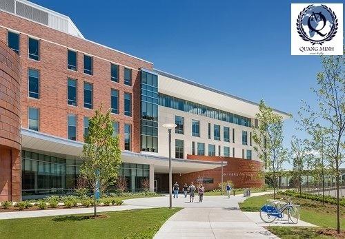 Chỉ cần GPA từ 3.0 đã có học bổng tại Đại Học Massachusetts Boston