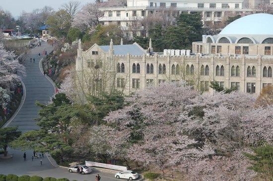 Du học Trường Đại học Kyung Hee