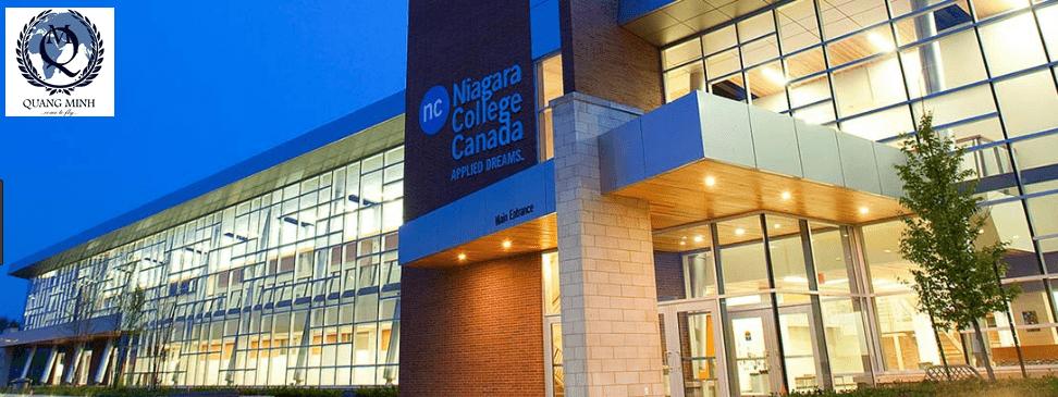 Niagara College giúp bạn thực hiện ước mơ Châu Mỹ thế nào.