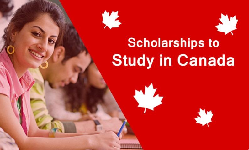 Săn học bổng Canada dành cho sinh viên quốc tế với đại học York