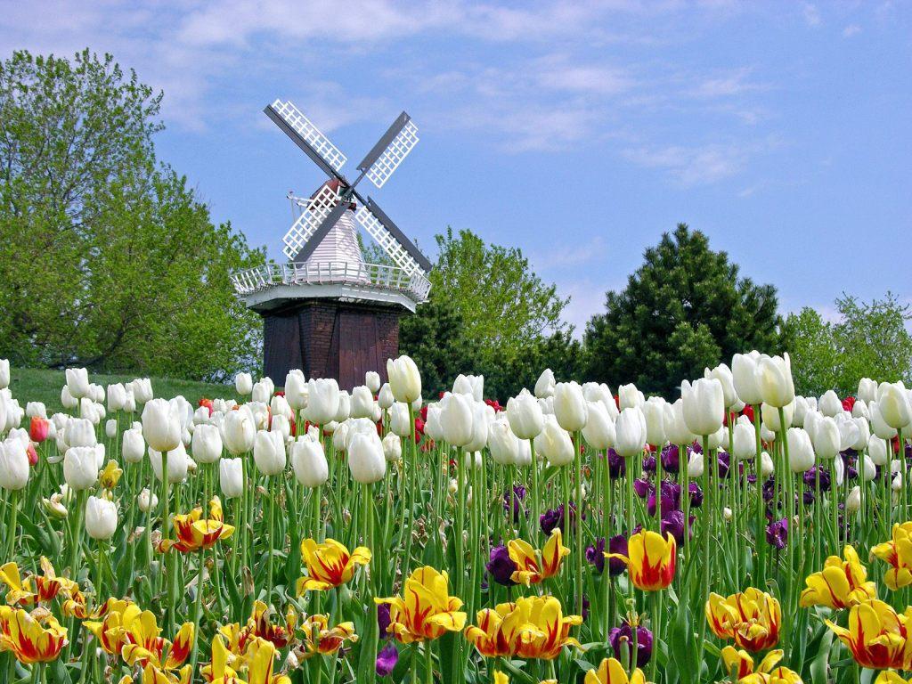 Những địa điểm du lịch không thể bỏ qua tại Hà Lan (P1)